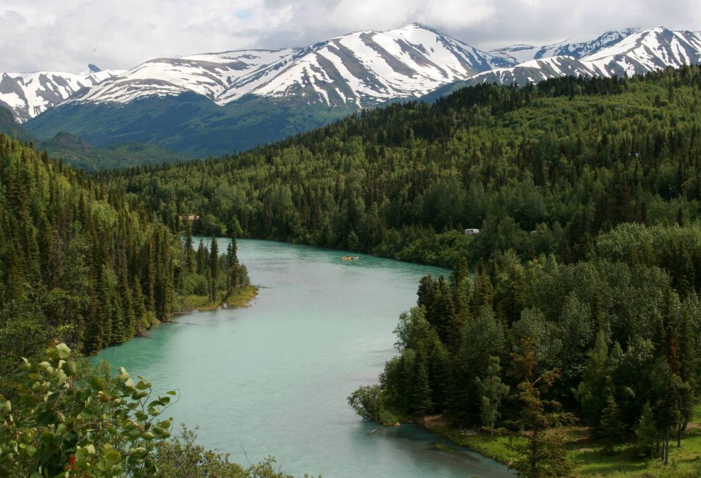 Kenai River sightseeing tour is perfect for all folks.